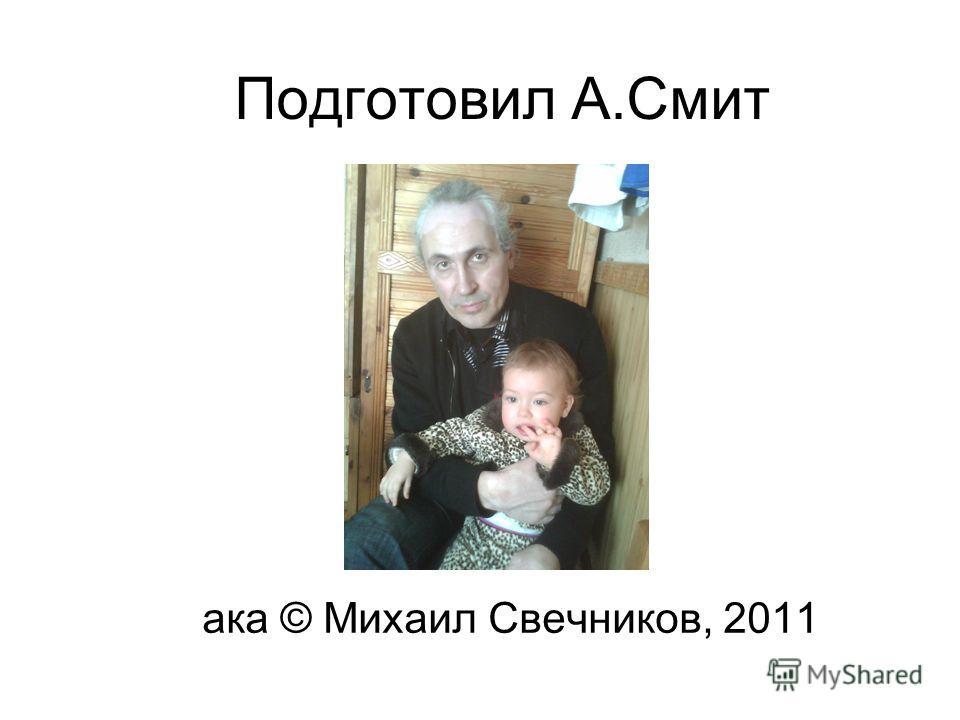 Подготовил А.Смит ака © Михаил Свечников, 2011