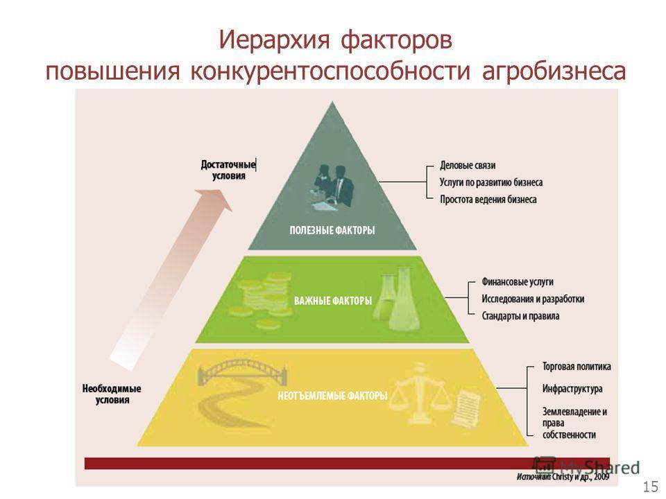 Иерархия факторов повышения конкурентоспособности агробизнеса 15