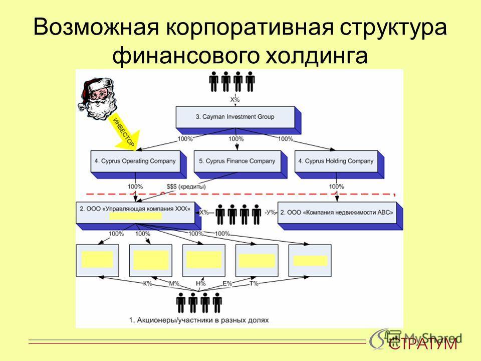 Возможная корпоративная структура финансового холдинга