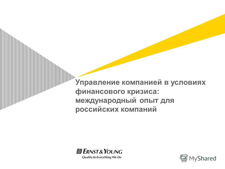 Управление компанией в условиях финансового кризиса: международный опыт для российских компаний