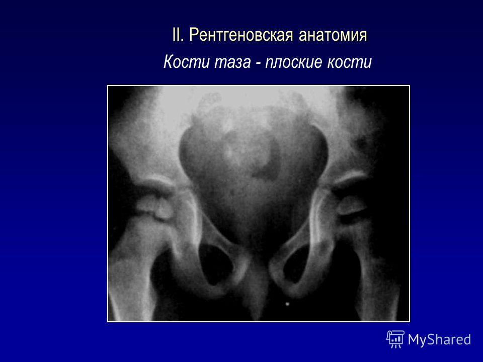 II. Рентгеновская анатомия II. Рентгеновская анатомия Кости таза - плоские кости