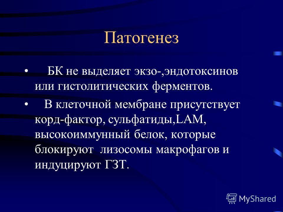 Патогенез БК не выделяет экзо-,эндотоксинов или гистолитических ферментов. В клеточной мембране присутствует корд-фактор, сульфатиды,LAM, высокоиммунный белок, которые блокируют лизосомы макрофагов и индуцируют ГЗТ.