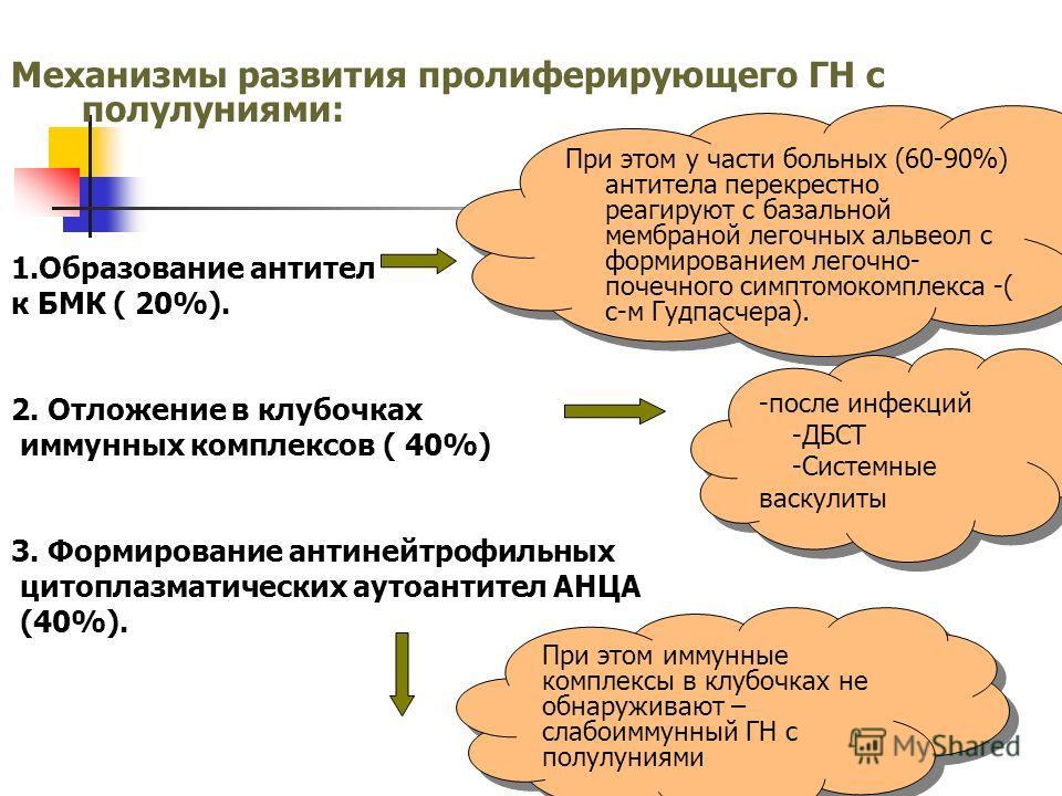Механизмы развития пролиферирующего ГН с полулуниями: 1.Образование антител к БМК ( 20%). 2. Отложение в клубочках иммунных комплексов ( 40%) 3. Формирование антинейтрофильных цитоплазматических аутоантител АНЦА (40%). При этом у части больных (60-90