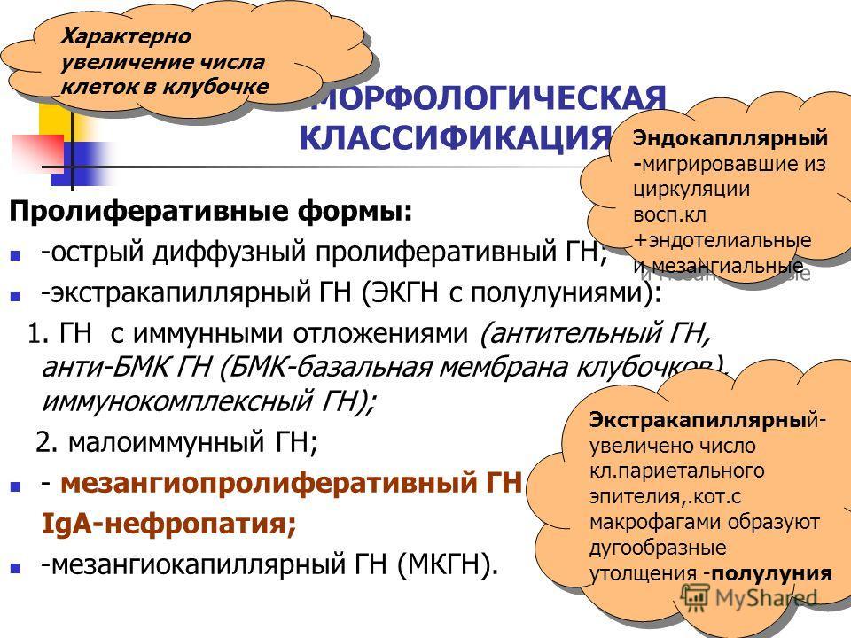 МОРФОЛОГИЧЕСКАЯ КЛАССИФИКАЦИЯ ГН. Пролиферативные формы: -острый диффузный пролиферативный ГН; -экстракапиллярный ГН (ЭКГН с полулуниями): 1. ГН с иммунными отложениями (антительный ГН, анти-БМК ГН (БМК-базальная мембрана клубочков), иммунокомплексны