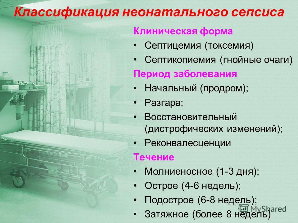 Токсемия фото