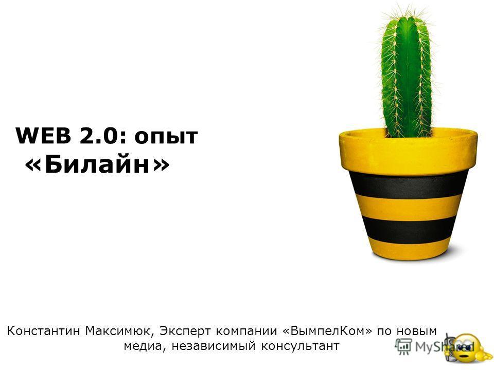 Стандартные цвета Билайн WEB 2.0: опыт «Билайн» Константин Максимюк, Эксперт компании «ВымпелКом» по новым медиа, независимый консультант