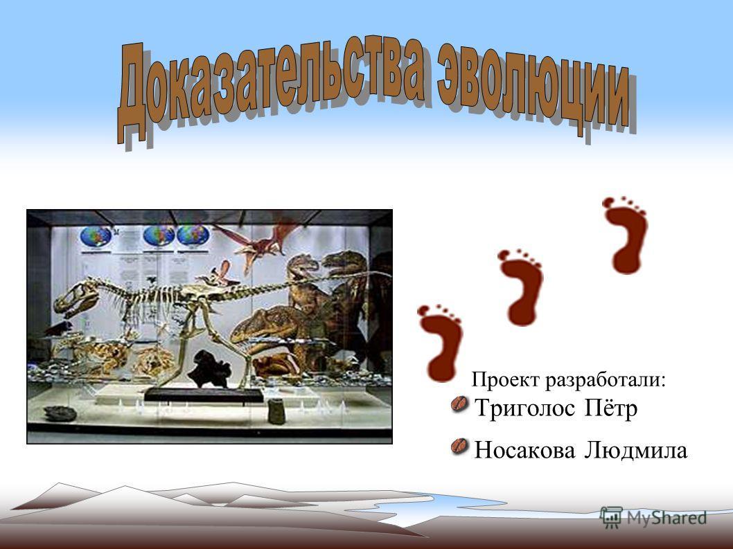 Триголос Пётр Носакова Людмила Проект разработали: