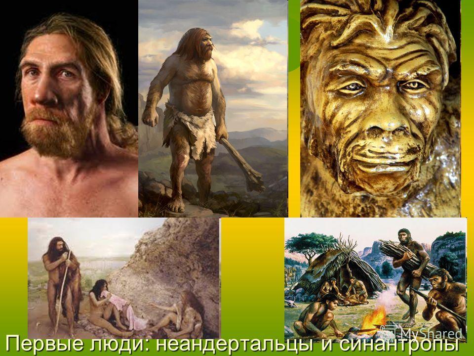 Первые люди: неандертальцы и синантропы
