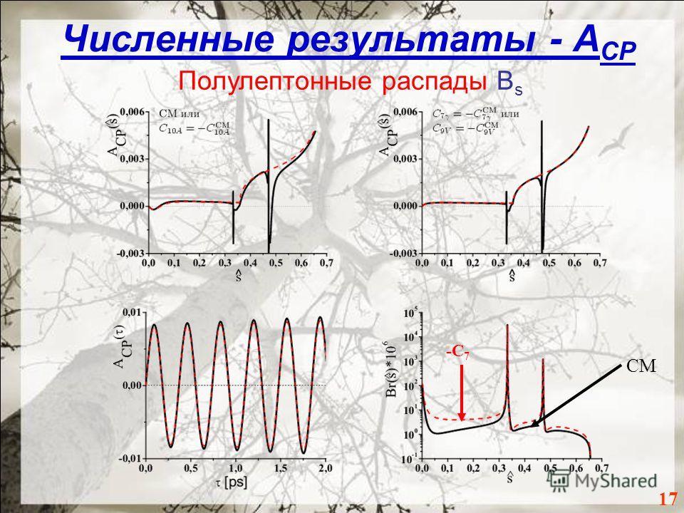Численные результаты - A CP 17 Полулептонные распады B s СМ -С 7