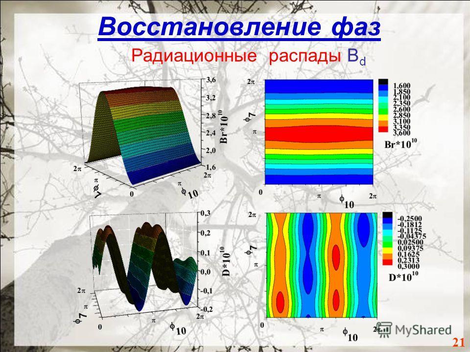 Восстановление фаз 21 Радиационные распады B d