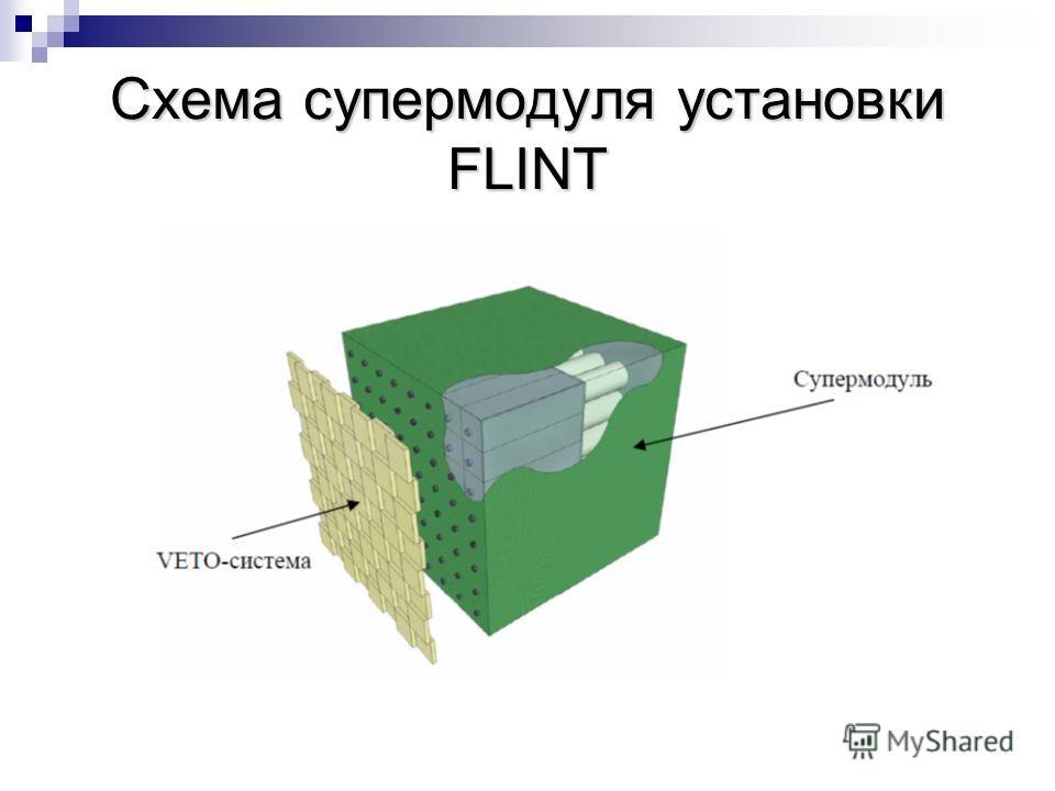 Схема супермодуля установки FLINT