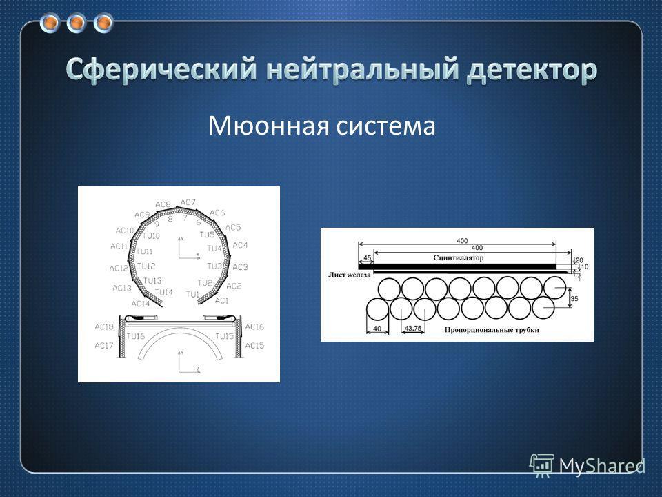 Мюонная система