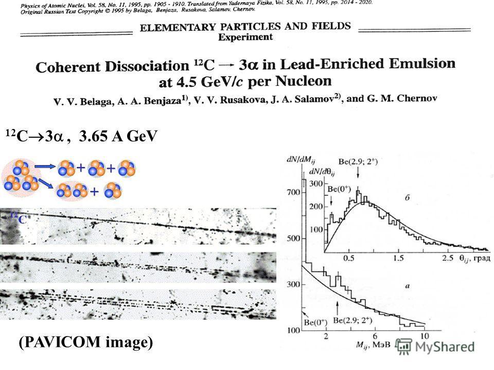 12 C 3, 3.65 A GeV (PAVICOM image)