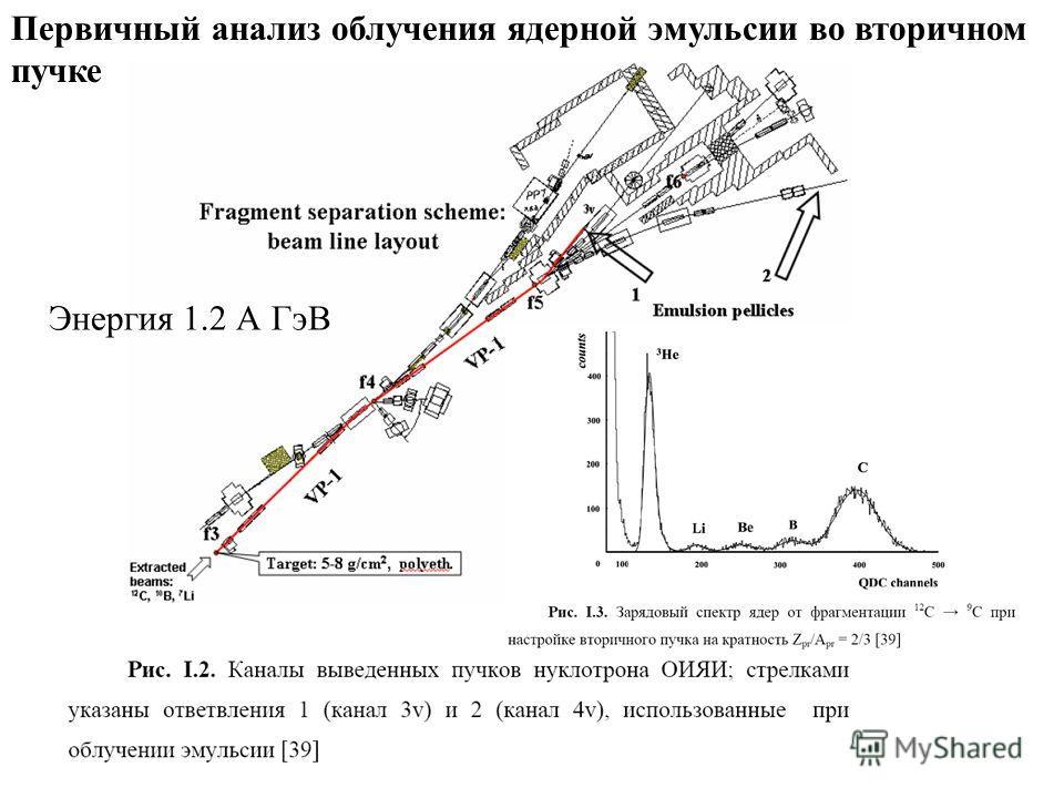 Первичный анализ облучения ядерной эмульсии во вторичном пучке Энергия 1.2 А ГэВ