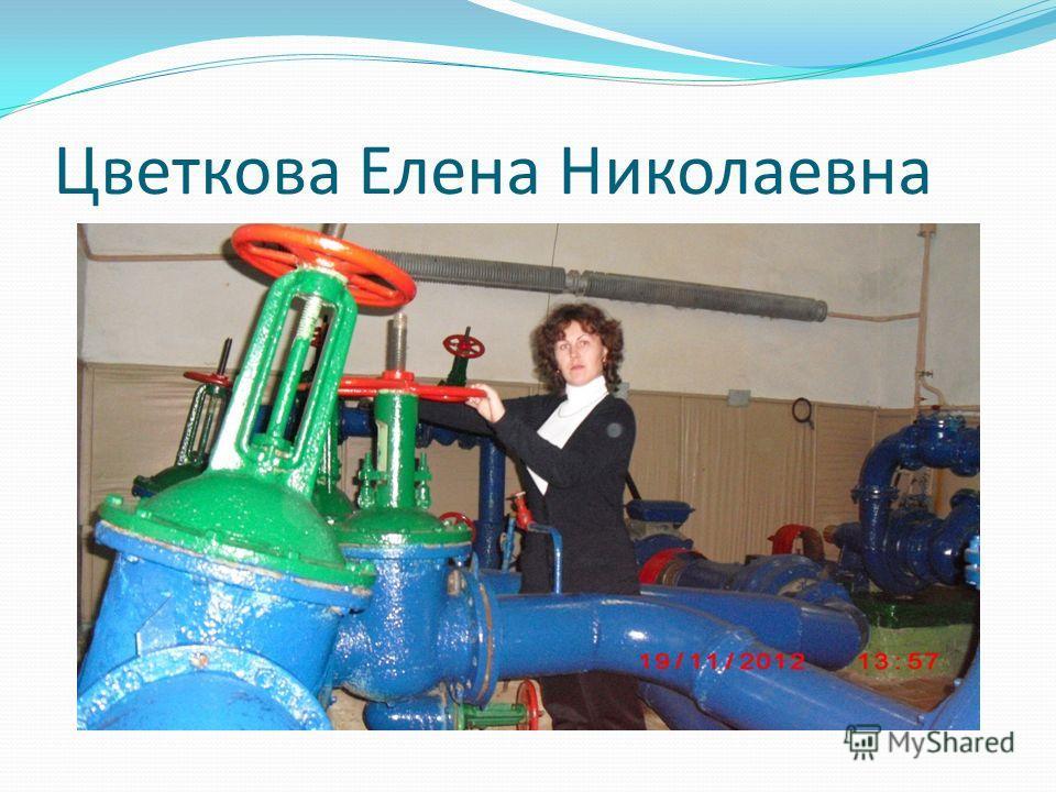 Цветкова Елена Николаевна