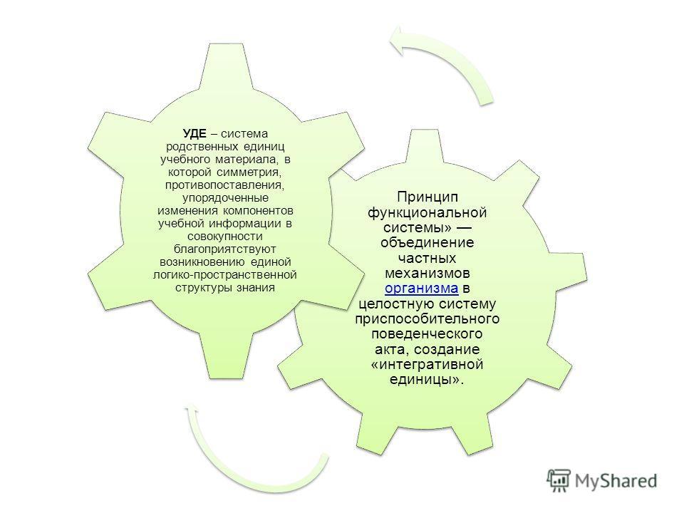 УДЕ – система родственных единиц учебного материала, в которой симметрия, противопоставления, упорядоченные изменения компонентов учебной информации в совокупности благоприятствуют возникновению единой логико- пространственной структуры знания Принци