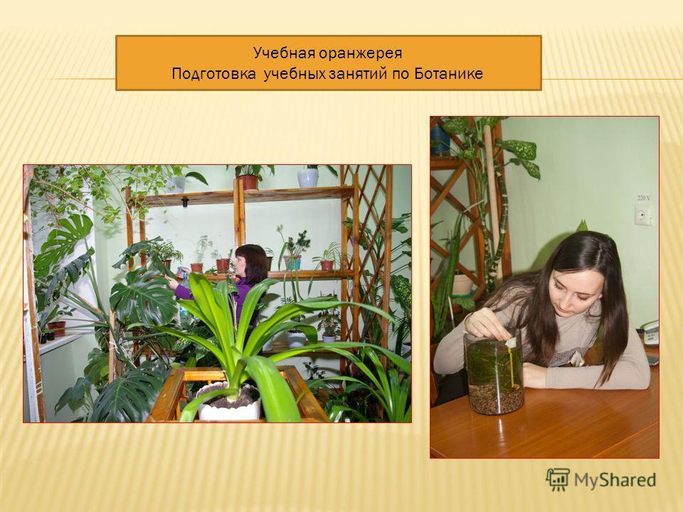 Учебная оранжерея Подготовка учебных занятий по Ботанике