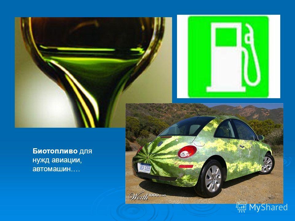 Биотопливо для нужд авиации, автомашин….