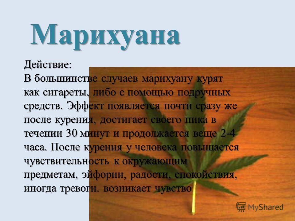 Марихуана Действие: В большинстве случаев марихуану курят как сигареты, либо с помощью подручных средств. Эффект появляется почти сразу же после курения, достигает своего пика в течении 30 минут и продолжается веще 2-4 часа. После курения у человека