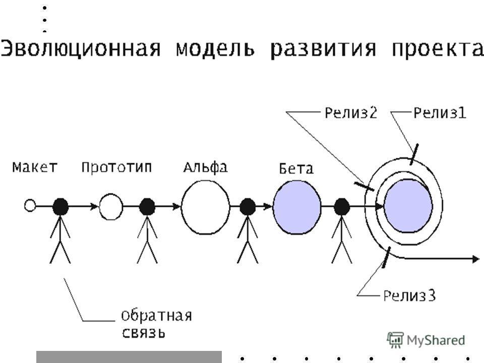 Эволюционная модель развития