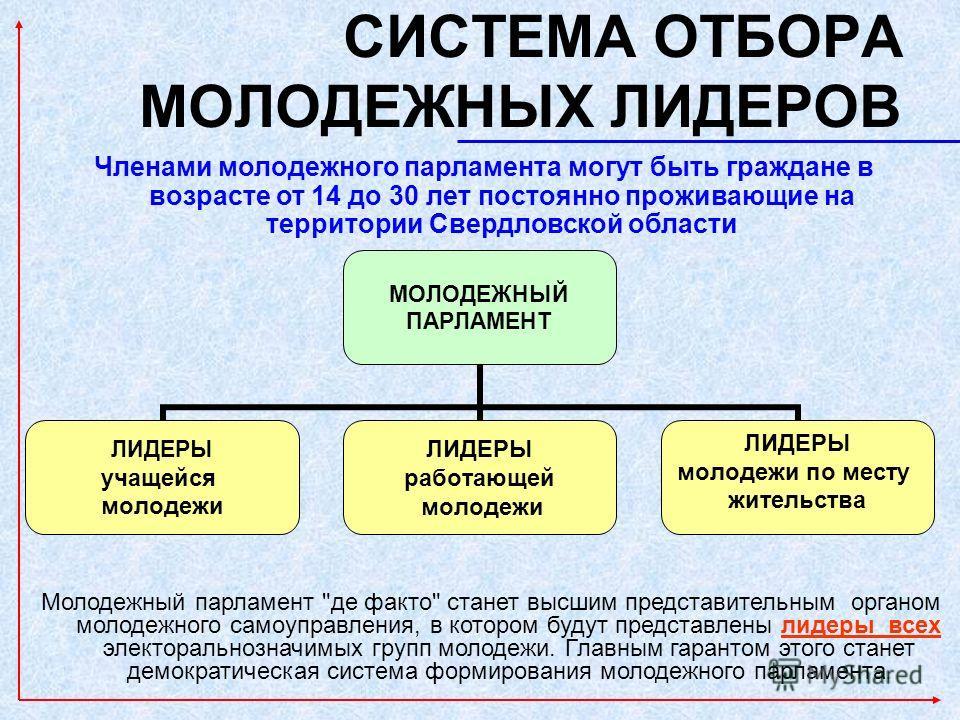 СИСТЕМА ОТБОРА МОЛОДЕЖНЫХ ЛИДЕРОВ Молодежный парламент