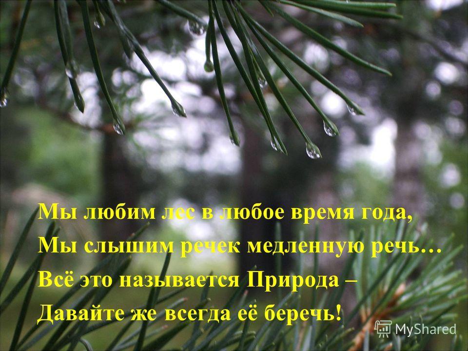 Мы любим лес в любое время года, Мы слышим речек медленную речь… Всё это называется Природа – Давайте же всегда её беречь!