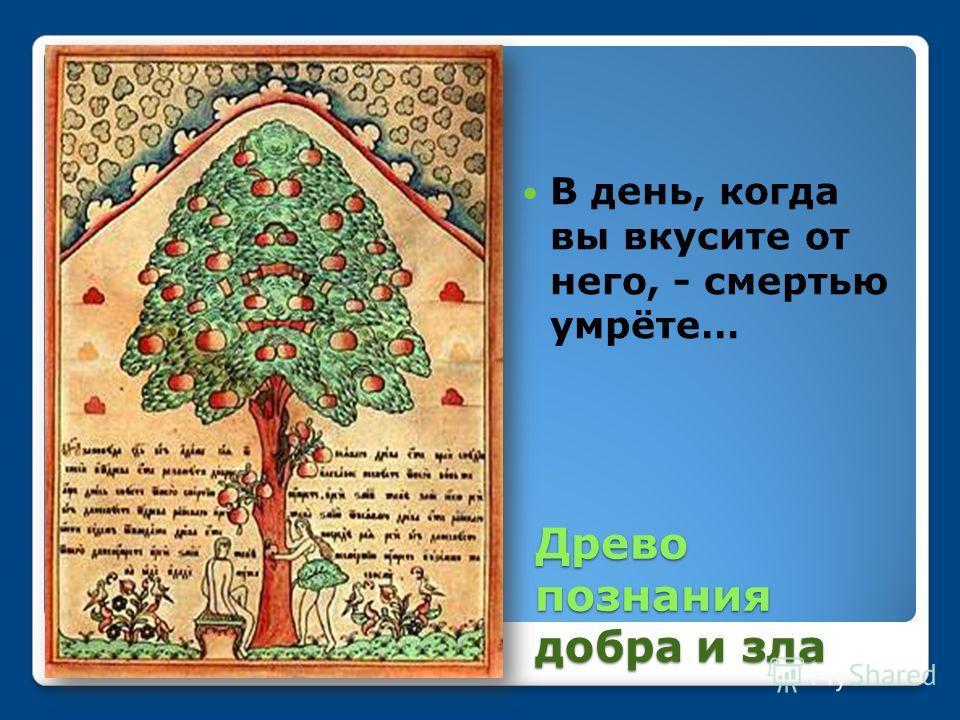 Древо познания добра и зла В день, когда вы вкусите от него, - смертью умрёте…