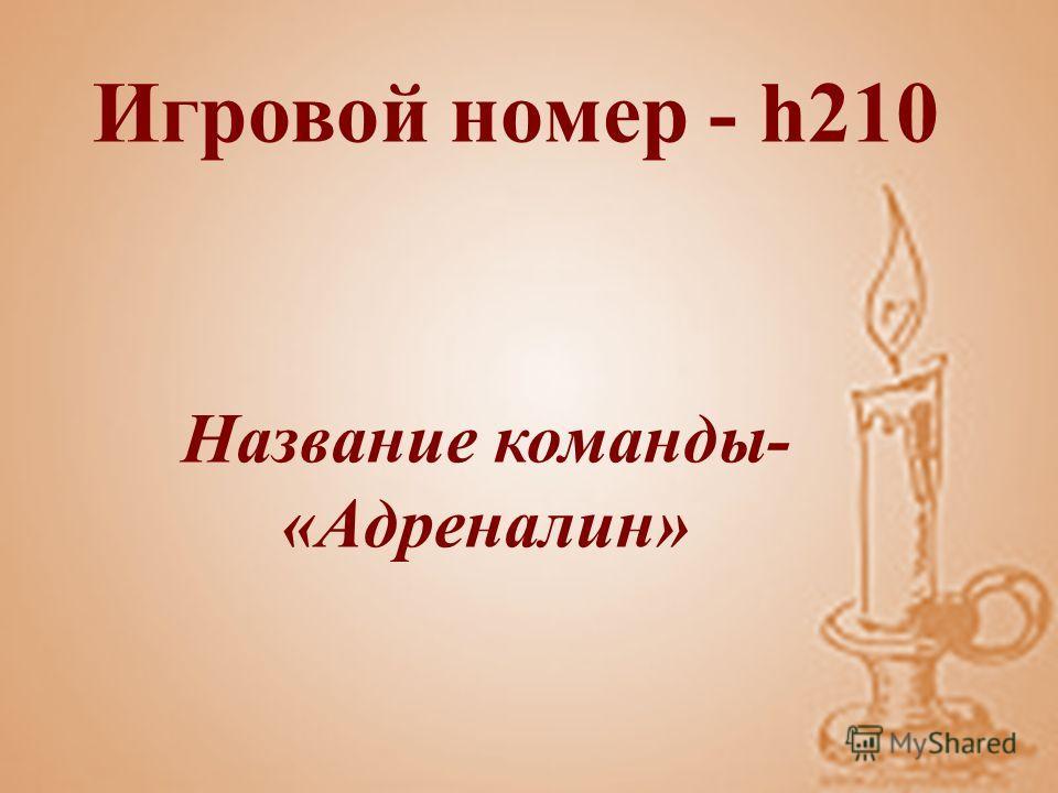 Игровой номер - h210 Название команды- «Адреналин»