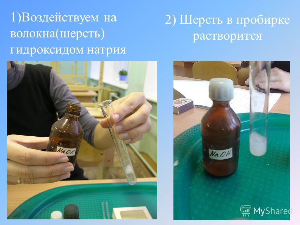 1) Воздействуем на волокна ( шерсть ) гидроксидом натрия 2) Шерсть в пробирке растворится