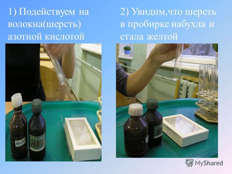 1) Подействуем на волокна ( шерсть ) азотной кислотой 2) Увидим, что шерсть в пробирке набухла и стала желтой