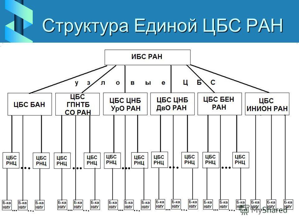 Структура Единой ЦБС РАН
