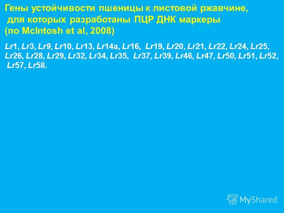 Гены устойчивости пшеницы к листовой ржавчине, для которых разработаны ПЦР ДНК маркеры (по McIntosh et al, 2008) Lr1, Lr3, Lr9, Lr10, Lr13, Lr14a, Lr16, Lr19, Lr20, Lr21, Lr22, Lr24, Lr25, Lr26, Lr28, Lr29, Lr32, Lr34, Lr35, Lr37, Lr39, Lr46, Lr47, L