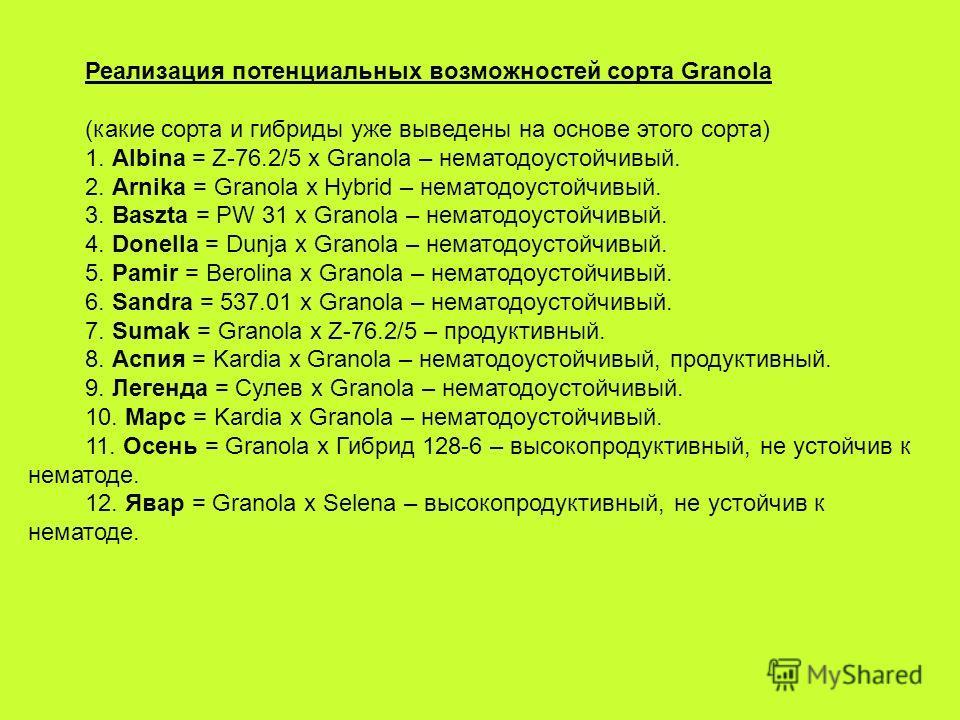 Реализация потенциальных возможностей сорта Granola (какие сорта и гибриды уже выведены на основе этого сорта) 1. Albina = Z-76.2/5 х Granola – нематодоустойчивый. 2. Arnika = Granola x Hybrid – нематодоустойчивый. 3. Baszta = PW 31 x Granola – немат