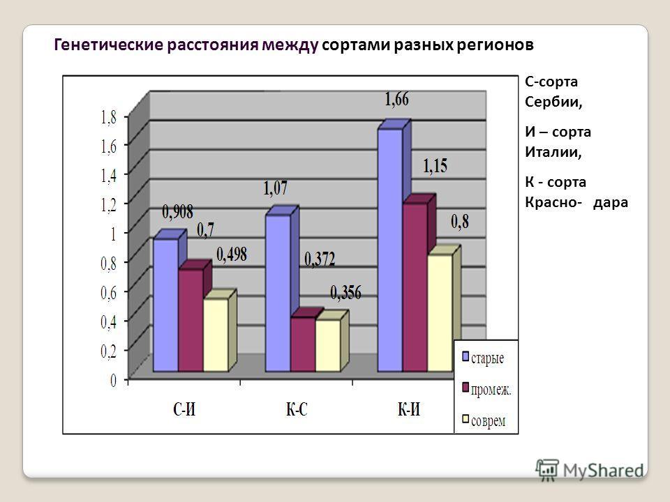 Генетические расстояния между сортами разных регионов С-сорта Сербии, И – сорта Италии, К - сорта Красно- дара