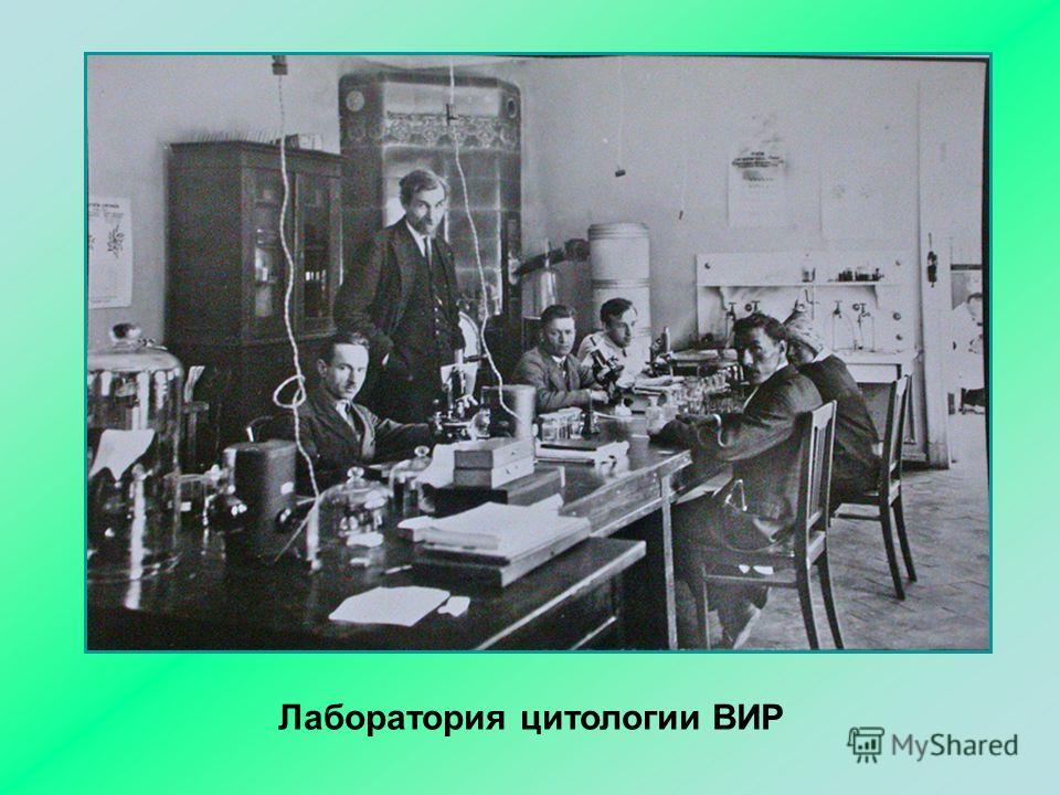 Лаборатория цитологии ВИР