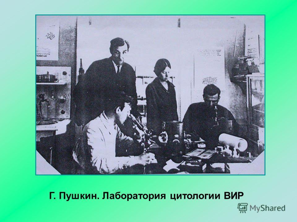 Г. Пушкин. Лаборатория цитологии ВИР