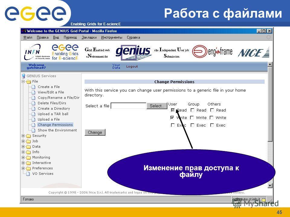 Enabling Grids for E-sciencE 45 Работа с файлами Изменение прав доступа к файлу