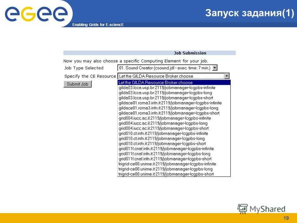 Enabling Grids for E-sciencE 19 Запуск задания(1)