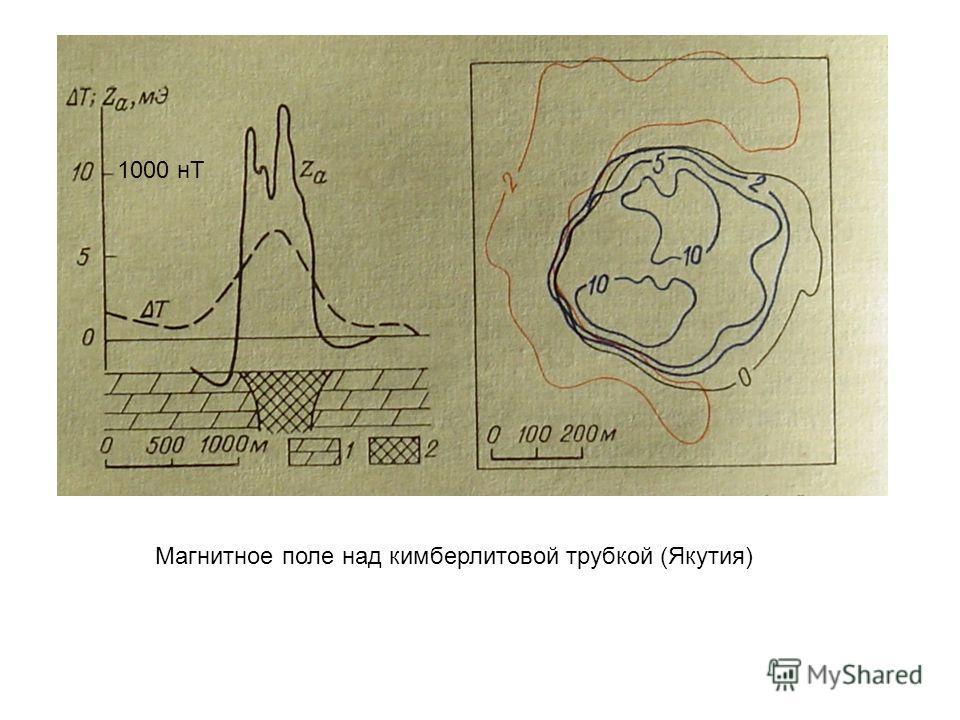 Магнитное поле над кимберлитовой трубкой (Якутия) 1000 нТ