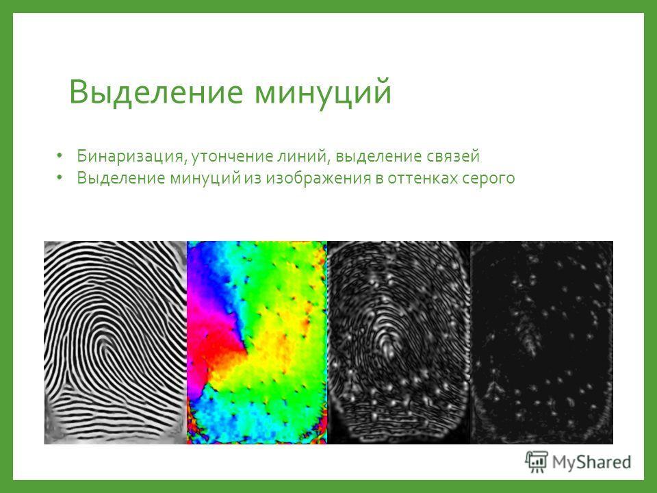 Выделение минуций Бинаризация, утончение линий, выделение связей Выделение минуций из изображения в оттенках серого