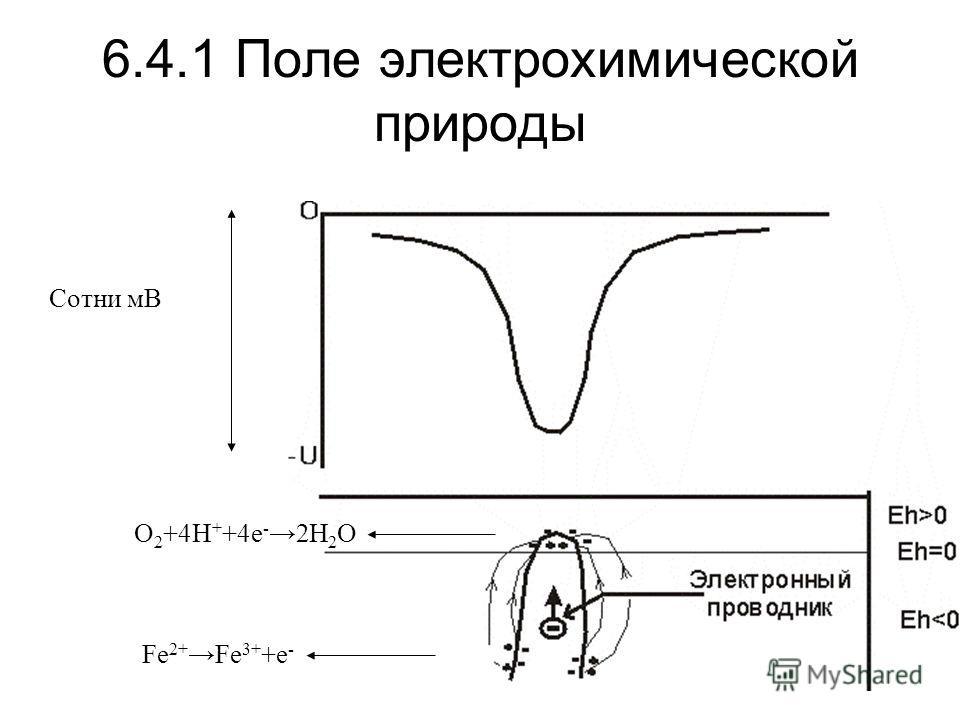 6.4.1 Поле электрохимической природы Fe 2+ Fe 3+ +e - O 2 +4H + +4e - 2H 2 O Сотни мВ