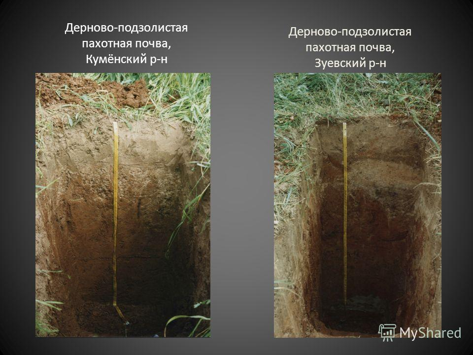 Дерново-подзолистая пахотная почва, Кумёнский р-н Дерново-подзолистая пахотная почва, Зуевский р-н