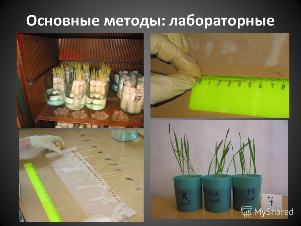 Основные методы: лабораторные