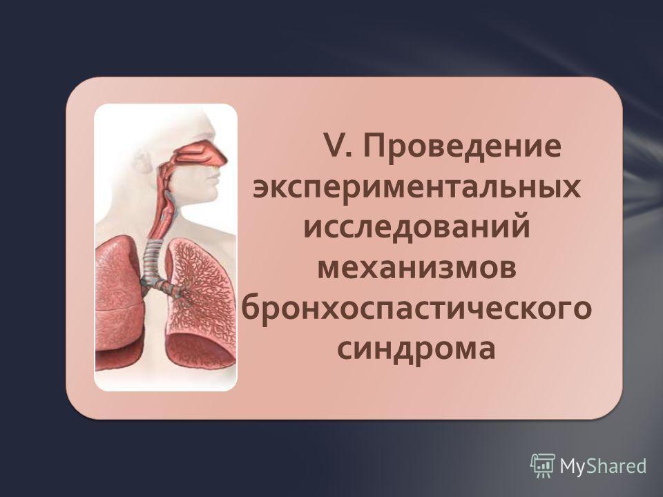 V. Проведение экспериментальных исследований механизмов бронхоспастического синдрома
