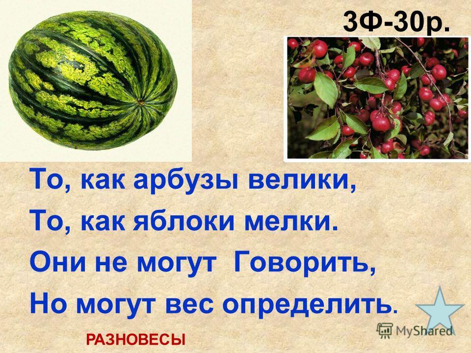 3Ф-30р. (30 сек.) То, как арбузы велики, То, как яблоки мелки. Они не могут Говорить, Но могут вес определить. РАЗНОВЕСЫ