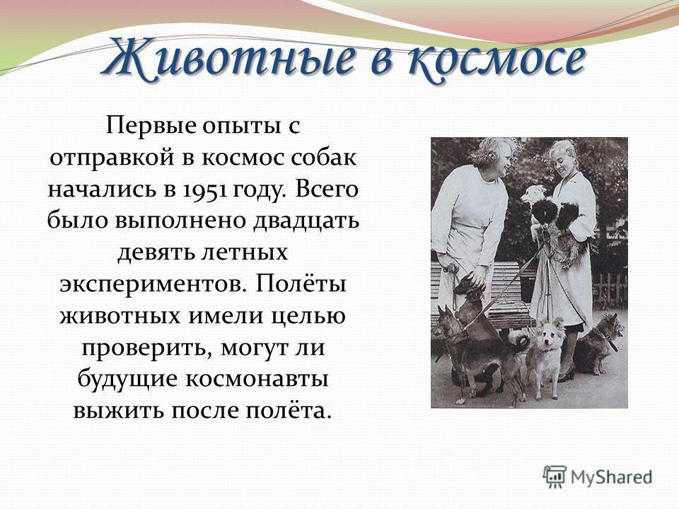 Животные в космосе Первые опыты с отправкой в космос собак начались в 1951 году. Всего было выполнено двадцать девять летных экспериментов. Полёты животных имели целью проверить, могут ли будущие космонавты выжить после полёта.