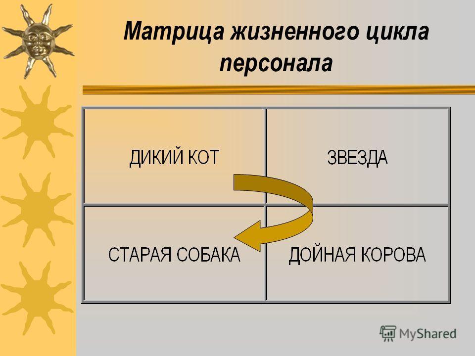 Матрица жизненного цикла персонала