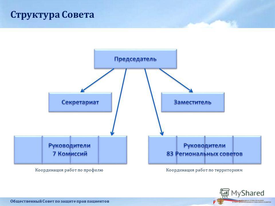 Структура Совета Общественный Совет по защите прав пациентов Координация работ по профилюКоординация работ по территориям