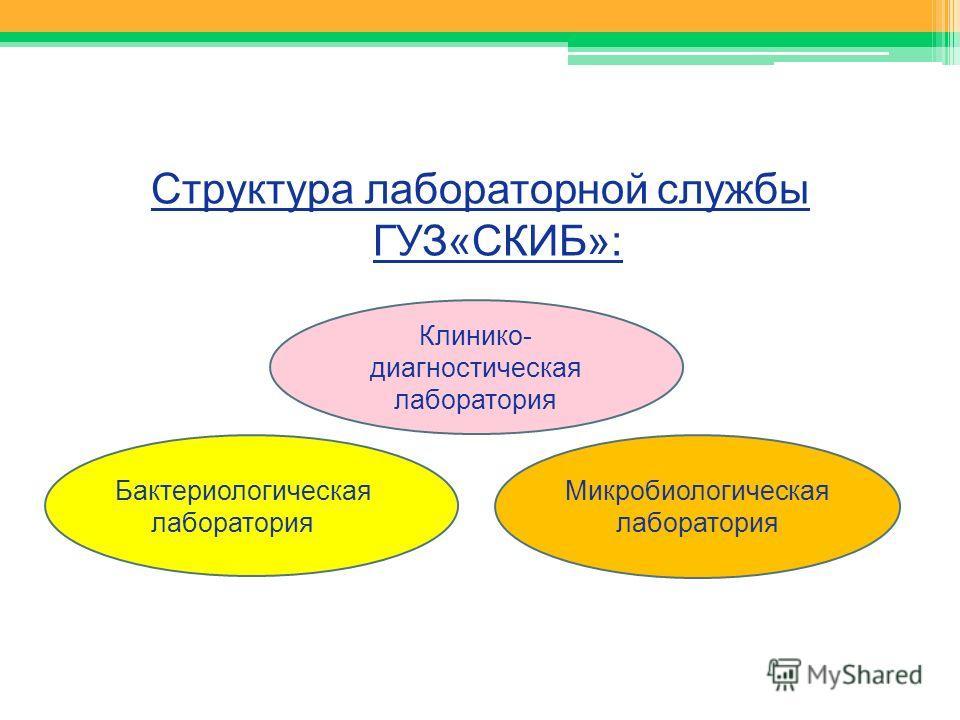 Структура лабораторной службы ГУЗ«СКИБ»: Бактериологическая лаборатория Микробиологическая лаборатория Клинико- диагностическая лаборатория