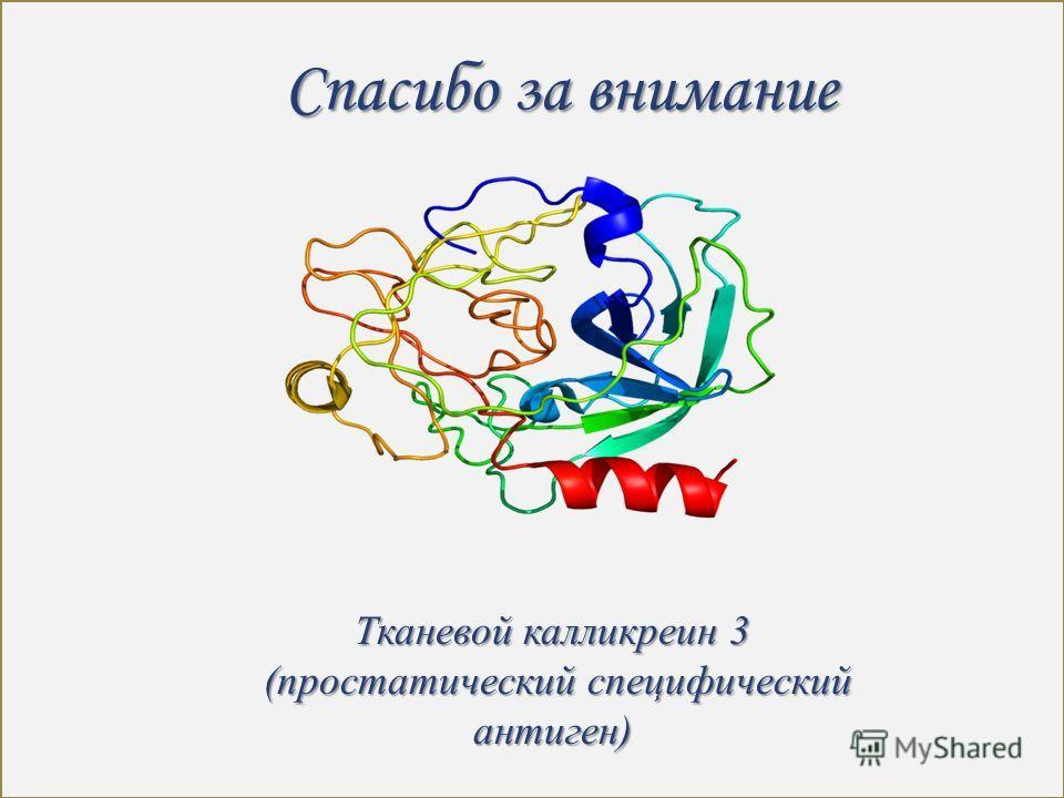 Спасибо за внимание Тканевой калликреин 3 (простатический специфический антиген) (простатический специфический антиген)